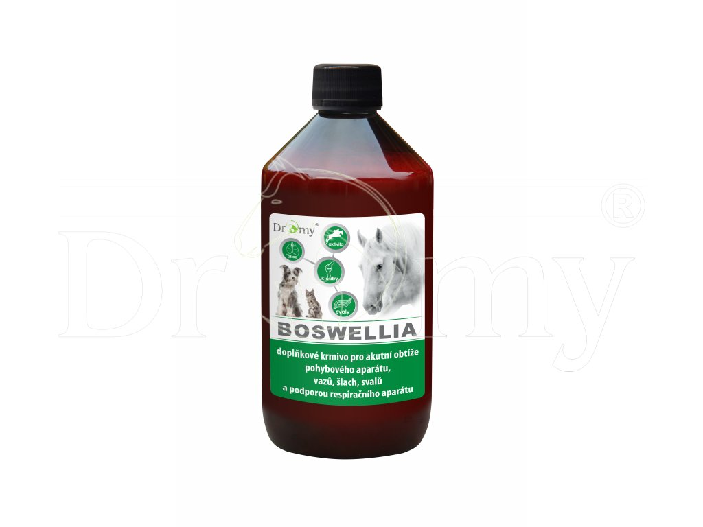 Dromy Boswelia 1000ml